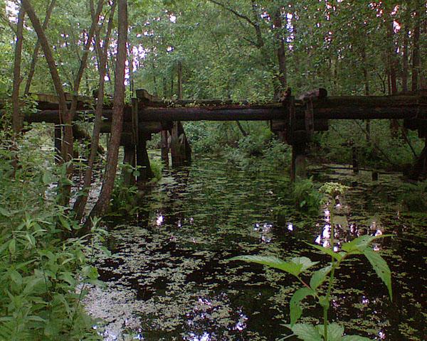 Полуразрушенный ж/д мост через старицу